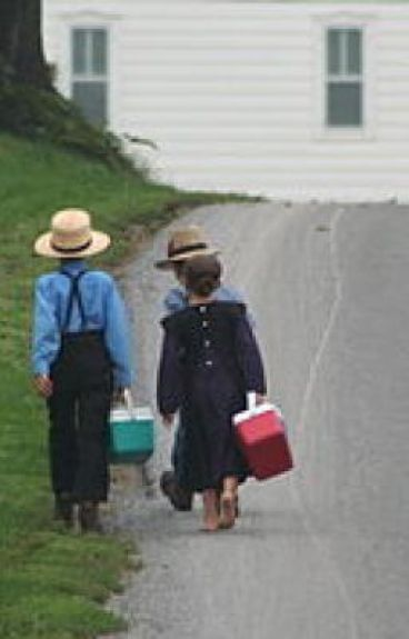 An Amish Teenager's World
