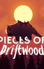 Pieces of Driftwood - an Avatar Story by gymnasticsxoxo