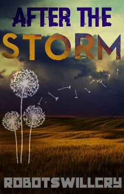 After The Storm (A Hunger Games Fanfic)