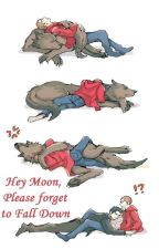 Hey Moon, Please Forget to Fall Down (Traduccion) by yuki_yuki1234