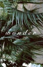 wonder // G. Schlierenzauer by s_nataliaa