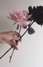 A Single Rose by Briarhawk