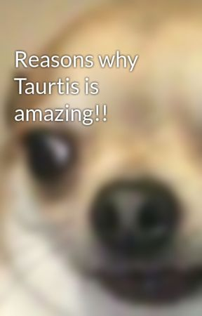 Reasons why Taurtis is amazing!! by kyrafangirls