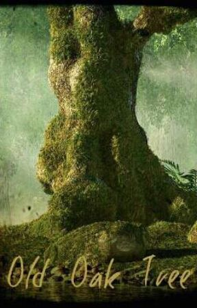 Old Oak Tree by singleflight