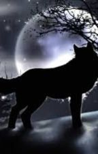 Wolves and Magic by DynamicCritic