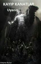 Kayıp Kanatlar: Uyanış by mrsbrownstone