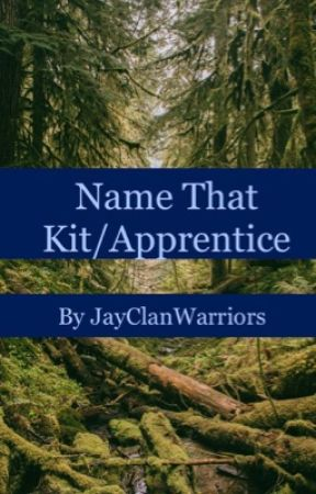 Name that kit/apprentice by JayClanWarriors