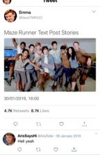 Maze Runner Text Post Stories  by NewtTMR422