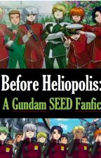 Before Heliopolis: A GUNDAM SEED Fanfic by SoldiersOfTheZodiac