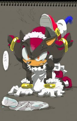 Sonadow 'Maid and Master'