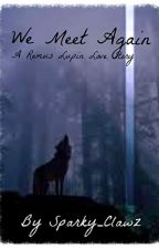 We Meet Again...*A Remus Lupin Love Story* (SLOW UPDATES!!) by SavvyBlack
