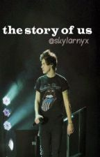 the story of us // h.s au by skylarnyx