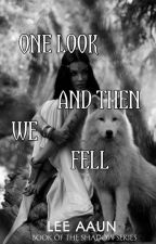 One Look And Then We Fell by leeaaun