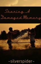 (Reconstructing)Sharing A Damaged Memory by silverspider