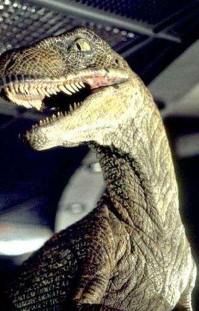 jurassic park dinosaurs x reader jurassic world raptor oc x reader wattpad jurassic world raptor oc x reader