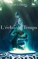 L'écho du Temps【Link x Reader】SS by un-lapin-hylien