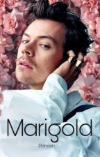 Marigold - Harry Styles by pohosh