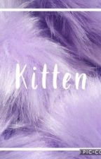 kitten by happyzaria