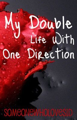 My Double Life with One Direction {Editing}