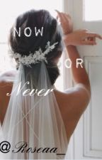 Now or never by roseaa_