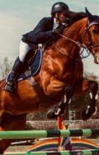 The chestnut mare by katteselin