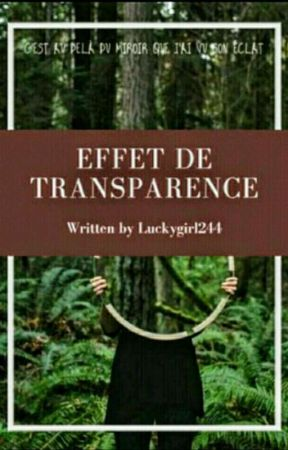 Effet de transparence, Éclat de nuit( Tome 1 ) by LuckyGirl1243