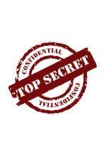 Secret Files  by krisylala