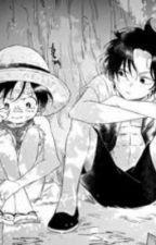 Ace x Luffy  by Shinorhara