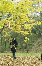 Naughty Kiss : Baek Seung Jo's 'Diary' by gaemwous