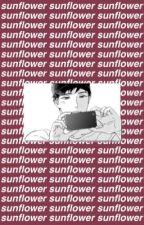 【sunflower】 by ALOE--