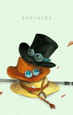 Đọc truyện [Đn One Piece] Xin chào, thế giới!