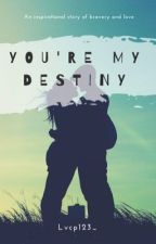 You're My Destiny [Ben Drowned X Reader's]  by cahayasenja123_