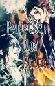 K-Project - Prinzessin des Feuers  by Brombeerstern_