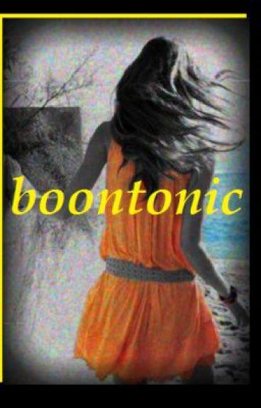 Boontonic(on hold)