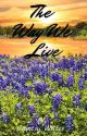 The Way We Live by countryreb020