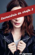 A Secretária do Chefe 3 by jeynianne