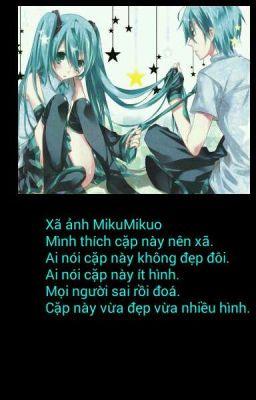 Xã ảnh MikuMikuo.