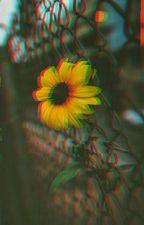 Rainy sun. by _c_writer