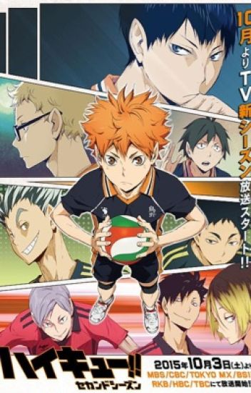 Haikyuu One-Shots (Haikyuu x reader)