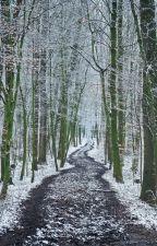 Winterjagd by Juls843