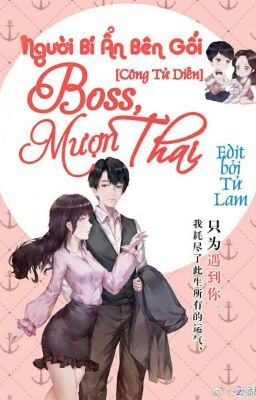 Đọc truyện Người bí ẩn bên gối: Boss, mượn thai!