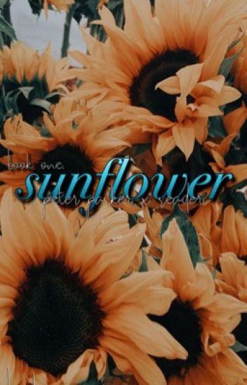 Sunflower {Peter Parker x Reader} - Broken Elementalist