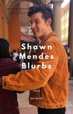 Shawn Mendes Blurbs by curlyshawn98