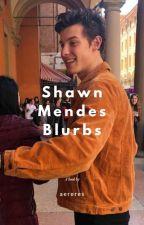 Shawn Mendes Blurbs by stardustom