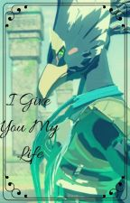 I Give You My Life ~ Revali x Reader by The2tailedfoxy