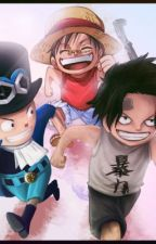 Yo soy la cuarta hermana (One Piece) by Suaara_1999