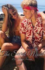 The Secret Model by jerikastinder