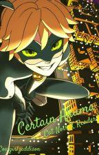 Certain Akuma {Cat Noir X  Reader} by cowgirlzeddison