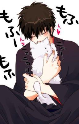 Đọc truyện [Shinichi x Kaito] Mèo. Nắng. Giày thủy tinh