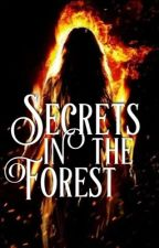 Secrets In The Forest by pixiedustfairy__